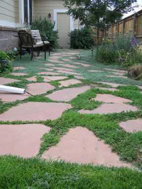 Flagstone Patio Sod Grass