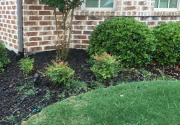 How To Prevent Grass In Flower Beds Weed Prevention In Garden Beds