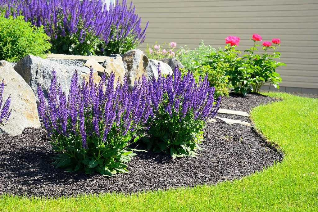 Cost Of Landscaping Front Yard Backyard Landscaping Costs How Much