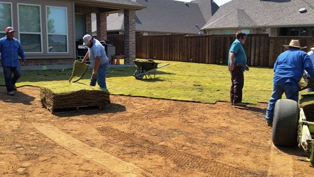 Sod Grass Installation McKinney TX