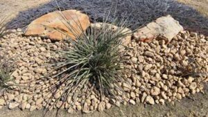 Decorative Landscaping Rocks in Flower Bed